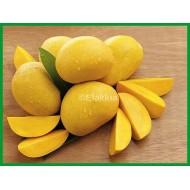 Mango Fruit 500g